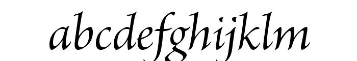 BriosoPro-ItSubh Font LOWERCASE