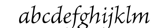 BriosoPro-LightItCapt Font LOWERCASE