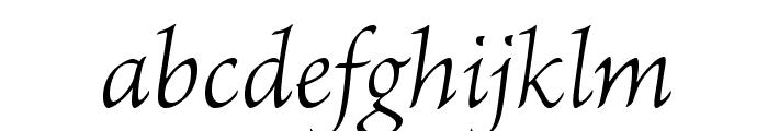 BriosoPro-LightIt Font LOWERCASE