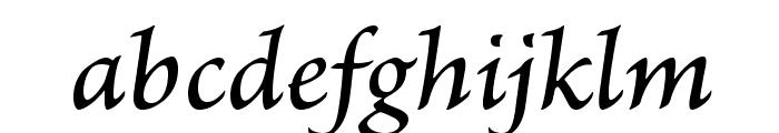 BriosoPro-MediumItCapt Font LOWERCASE