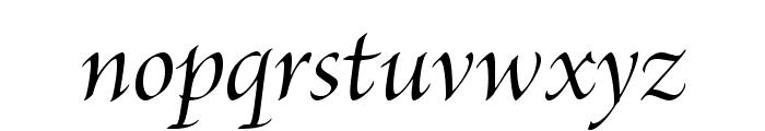 BriosoPro-MediumItDisp Font LOWERCASE