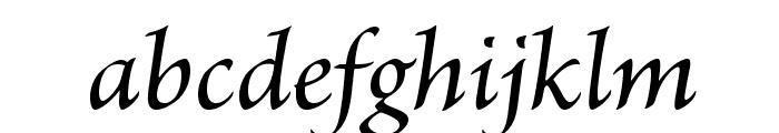 BriosoPro-MediumIt Font LOWERCASE