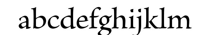BriosoPro-Medium Font LOWERCASE