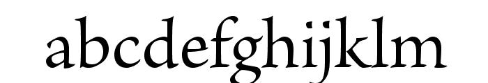 BriosoPro-Regular Font LOWERCASE