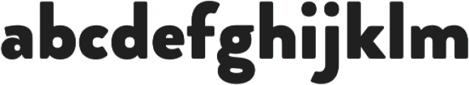 Brooklyn Heritage Sans Black otf (900) Font LOWERCASE