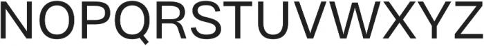 Bruta Pro Regular otf (400) Font UPPERCASE
