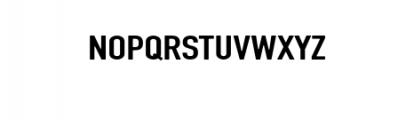 BraydenScriptBold.otf Font UPPERCASE