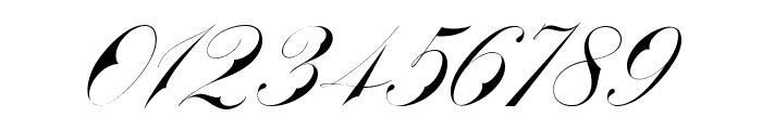 Bradstone-Parker Script Limited Free Version Font OTHER CHARS