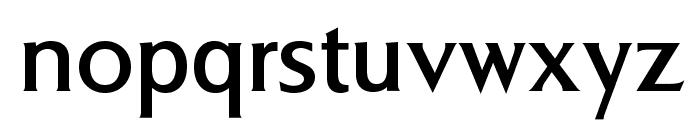 BrasileaOpti-Medium Font LOWERCASE