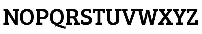 Bree Serif Regular Font UPPERCASE