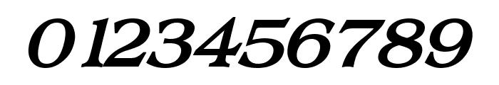 Broadsheet LDO Bold Italic Font OTHER CHARS