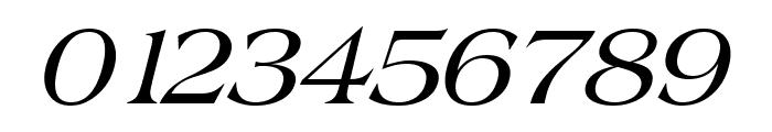 Broadsheet LDO Italic Font OTHER CHARS