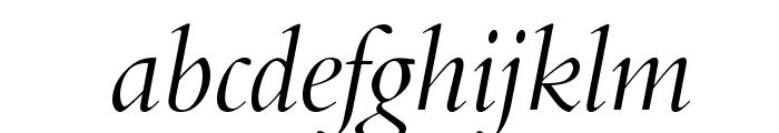 BrophyOpti-Italic Font LOWERCASE