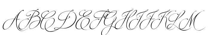 Brotherhood Script Font UPPERCASE