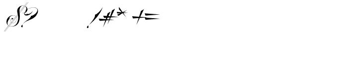 Bradstone Parker Script Font OTHER CHARS