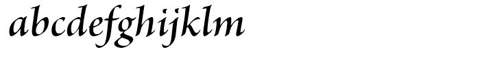 Brioso Semibold Italic Subhead Font LOWERCASE