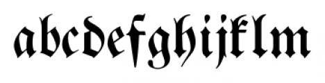 Breitkopf Fraktur Pro Regular Font LOWERCASE