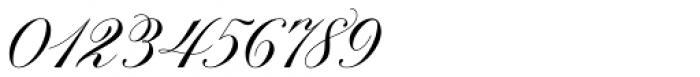 Brachetto Regular Font OTHER CHARS