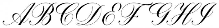 Brachetto Regular Font UPPERCASE