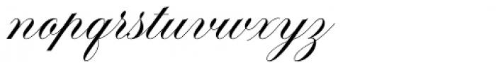 Brachetto Regular Font LOWERCASE