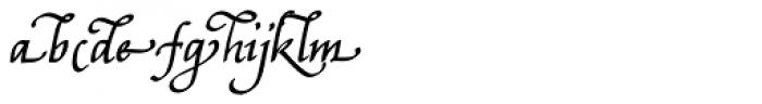 Bradley Chancery Bold Italic Font LOWERCASE