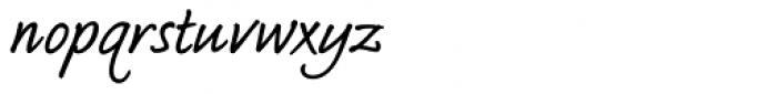 Bradley Type Pro Bold Italic Font LOWERCASE