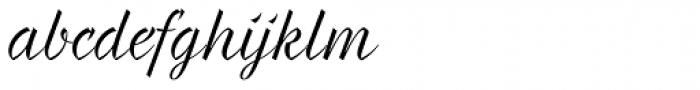 Braxton Book Font LOWERCASE