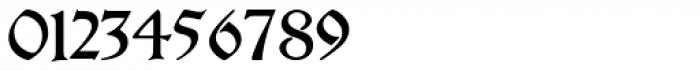 Breitkopf Fraktur Pro Font OTHER CHARS