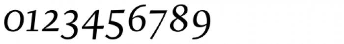 Brioni Std Light Italic Font OTHER CHARS