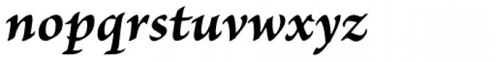 Brioso Pro Caption Bold Italic Font LOWERCASE