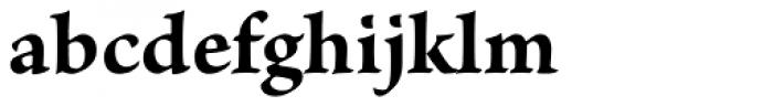 Brioso Pro Caption Bold Font LOWERCASE