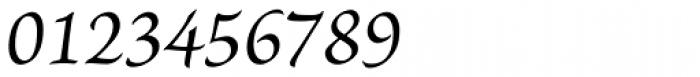 Brioso Pro Caption Italic Font OTHER CHARS