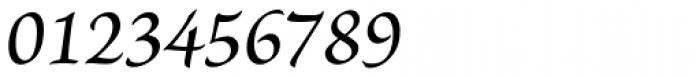 Brioso Pro Caption Medium Italic Font OTHER CHARS