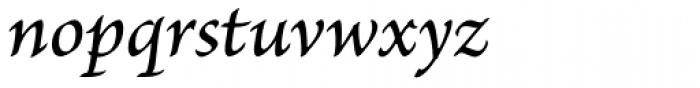 Brioso Pro Caption Medium Italic Font LOWERCASE