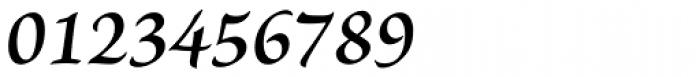 Brioso Pro Caption SemiBold Italic Font OTHER CHARS