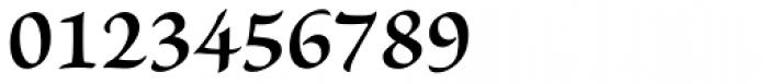 Brioso Pro Caption SemiBold Font OTHER CHARS