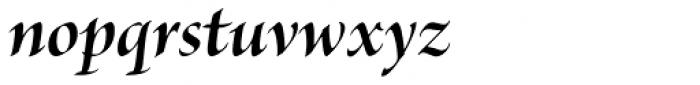 Brioso Pro Display Bold Italic Font LOWERCASE