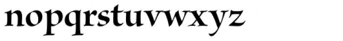 Brioso Pro Display Bold Font LOWERCASE