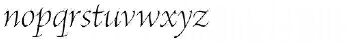 Brioso Pro Display Light Italic Font LOWERCASE