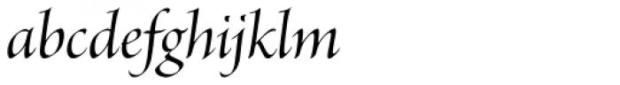 Brioso Pro Display Medium Italic Font LOWERCASE