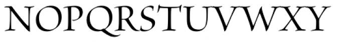 Brioso Pro Display Medium Font UPPERCASE
