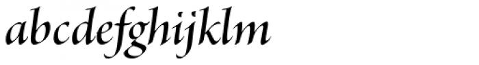 Brioso Pro Display SemiBold Italic Font LOWERCASE