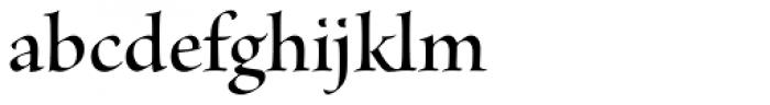 Brioso Pro Display SemiBold Font LOWERCASE