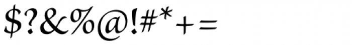 Brioso Pro Medium Font OTHER CHARS
