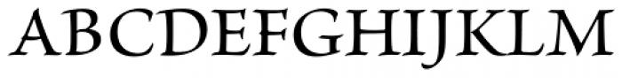 Brioso Pro Medium Font UPPERCASE