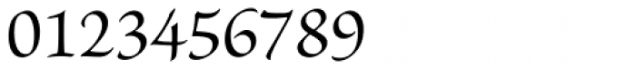 Brioso Pro Regular Font OTHER CHARS