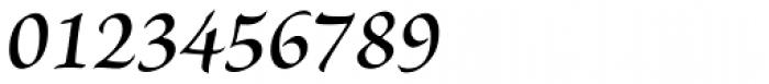 Brioso Pro SemiBold Italic Font OTHER CHARS
