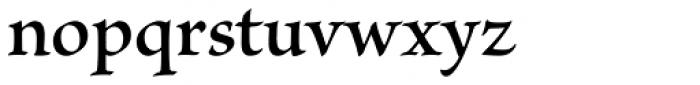 Brioso Pro SemiBold Font LOWERCASE