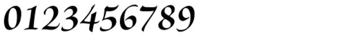 Brioso Pro SubHead Bold Italic Font OTHER CHARS