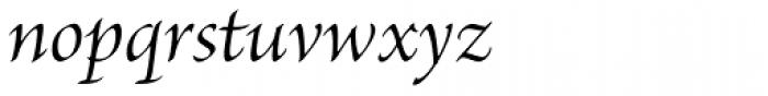 Brioso Pro SubHead Italic Font LOWERCASE